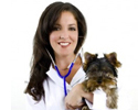 Veterinary Colleges and Universities in India